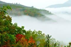 A névoa e as cores da queda cobrem a parte superior de uma montanha. Fotografia de Stock