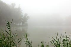 Névoa em um lago Fotografia de Stock