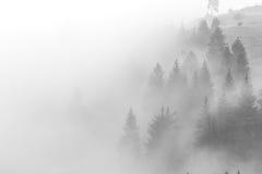 A névoa está escalando no monte antes do nascer do sol Fotos de Stock Royalty Free