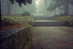A névoa místico foto de stock royalty free