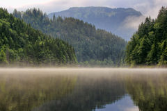 Névoa no lago Foto de Stock Royalty Free