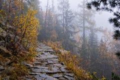 Névoa pesada em uma trilha da montanha Imagens de Stock
