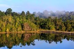 Névoa que aumenta na manhã sobre a floresta, reflexão sobre a lagoa grande, árvores, como o país das maravilhas Fotografia de Stock