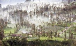 A névoa que flui sobre a vila de Cemoro Lawang na manhã localizou ao nordeste de Mt Bromo, Indonésia foto de stock royalty free