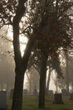 Névoa sobre lápides do cemitério na luz da manhã Imagens de Stock Royalty Free