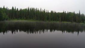 Névoa sobre o lago da manhã video estoque