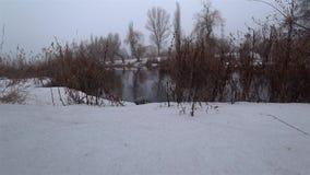 Névoa sobre o rio atual em um parque, neve, aproximação amigável, primavera video estoque
