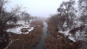Névoa sobre o rio atual no parque, neve, aproximação amigável, primavera filme