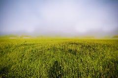 Névoa sobre a paisagem austríaca Imagem de Stock