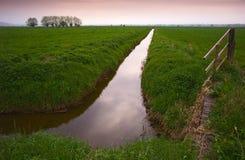 Níveis de Somerset em Inglaterra Fotografia de Stock Royalty Free