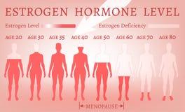 Nível de hormona da hormona estrogênica ilustração royalty free