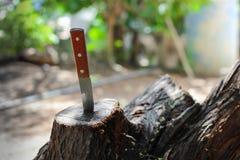 Nóż z drewnianą rękojeścią, zablokowaną w kawałku bagażnik fotografia stock