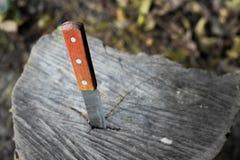 Nóż z drewnianą rękojeścią, zablokowaną w kawałku bagażnik fotografia royalty free