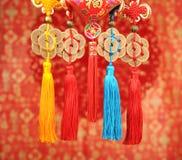 Nó afortunado pelo ano novo chinês Foto de Stock Royalty Free