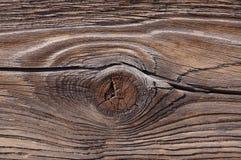 Nó e grão de madeira Imagem de Stock Royalty Free