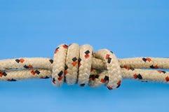 Nó na corda marinha colorida Imagem de Stock