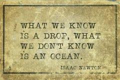 Nós conhecemos Newton imagens de stock