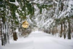Nós estamos preparando-nos para o ano novo e o Natal Imagens de Stock Royalty Free