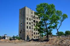 Nöd- byggnad och träd Fotografering för Bildbyråer