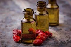 Nödvändig olja för hundros på små flaskor Fotografering för Bildbyråer