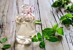 Nödvändig olja för mintkaramell Arkivfoton
