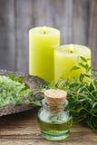 Nödvändig olja för Myrtus (myrten) royaltyfria foton