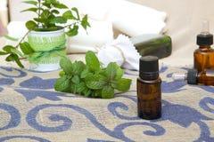 Nödvändig olja för pepparmint Arkivbild