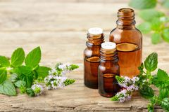 Nödvändig olja för pepparmint och pepparmintblommor på träbrädet Arkivfoton
