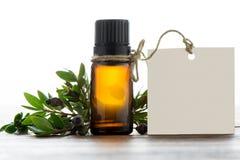 Nödvändig olja, tömmer etiketten inom ett tappningtenn och lavendelflöde Arkivbild