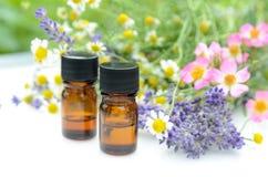 Nödvändiga oljor med lavendel och örter Royaltyfri Foto