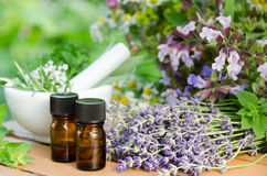 Nödvändiga oljor med växt- blommor Royaltyfri Bild