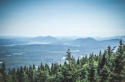 Nördlicher Wald und nebelhafte Berge lizenzfreies stockbild