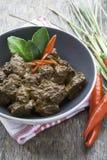 Nötkött Rendang, indonesisk mat Fotografering för Bildbyråer