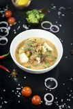 Nötköttmassamancurry, thai kokkonst royaltyfria foton