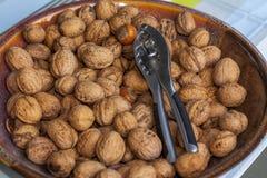 Nötknäppare bland hasselnötter och valnötter Royaltyfria Bilder