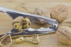 Nötknäppare med valnötter Royaltyfri Fotografi