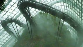 Núblese al conservador de la bóveda del bosque en la niebla, jardines por la bahía en Singapur almacen de video