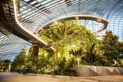 Núblese el interior del bosque, jardines por la bahía, Singapur Foto de archivo libre de regalías