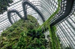 Núblese la bóveda del bosque en el jardín por la bahía Fotografía de archivo