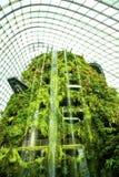Núblese la cascada del bosque, jardines por la bahía, Singapur Imagen de archivo libre de regalías