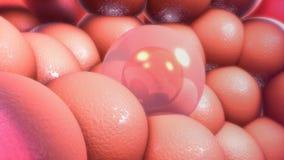 Núcleo de célula Fotos de archivo libres de regalías