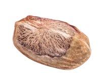 Núcleo do pistache isolado no fundo branco imagens de stock