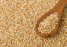 Núcleos crus, naturais, crus da semente do trigo mourisco na colher de madeira Imagem de Stock Royalty Free