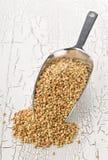 Núcleos crus, naturais, crus da semente do trigo mourisco na colher do metal Fotografia de Stock Royalty Free
