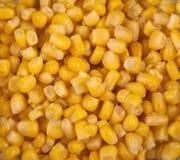 Núcleos de maíz fotos de archivo