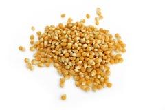 núcleos de maíz secos fotografía de archivo
