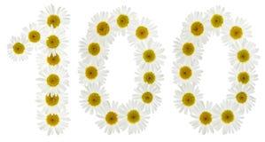 Número árabe 100, ciento, de las flores blancas de la manzanilla Imagen de archivo libre de regalías