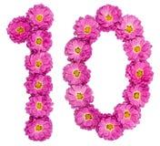 Número árabe 10, diez, de las flores del crisantemo, aisladas Imagen de archivo libre de regalías