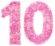Número árabe 10, diez, de las flores rosadas de la nomeolvides, aislante Imágenes de archivo libres de regalías
