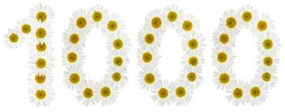 Número árabe 1000, mil, de las flores blancas del chamomi Foto de archivo